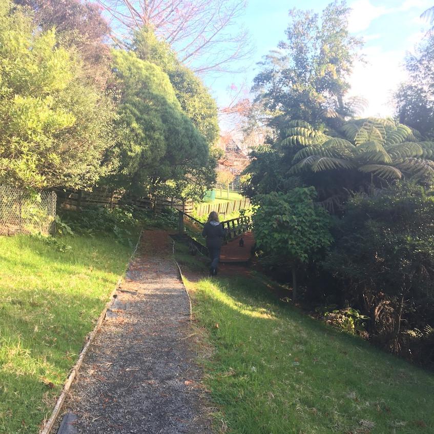 Roland Road walkway