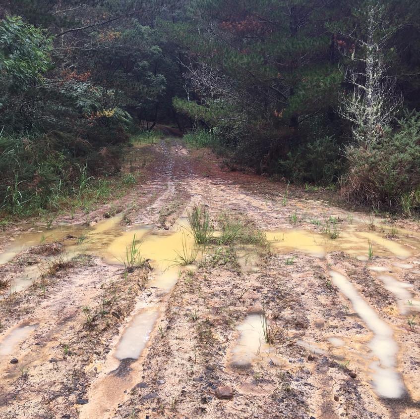 The mud hazards (even in summer)