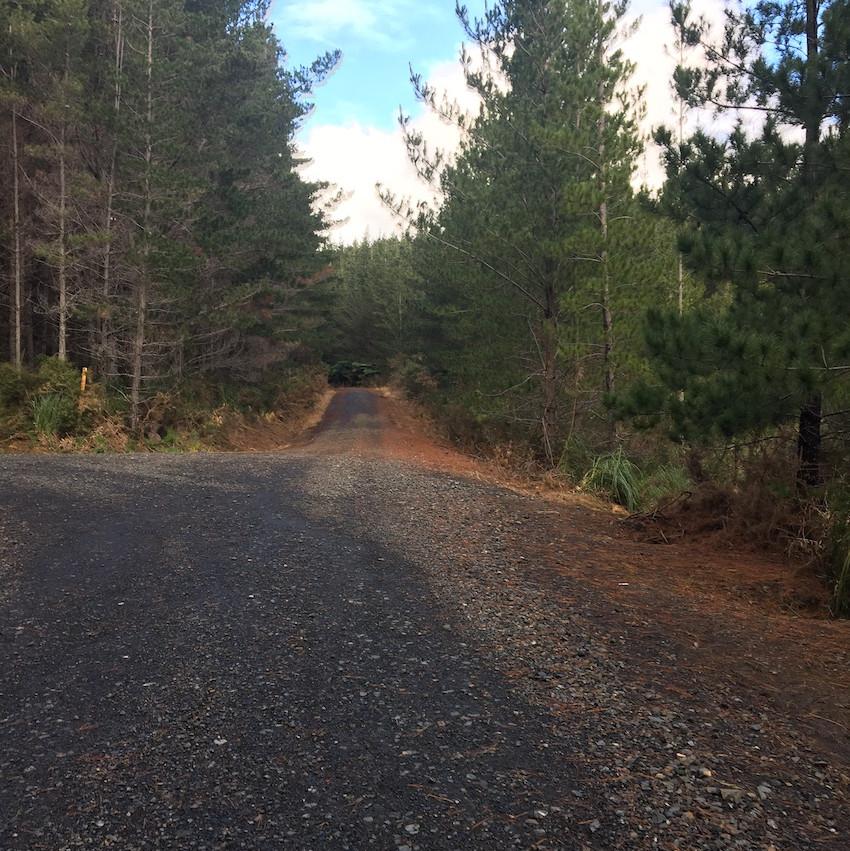 Trig Road - straight ahead