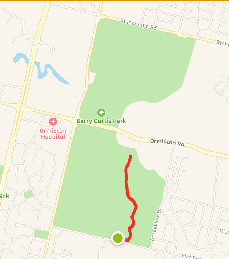 Pathway alongside sports fields