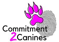 Dog Trainer Maitand Newcastle