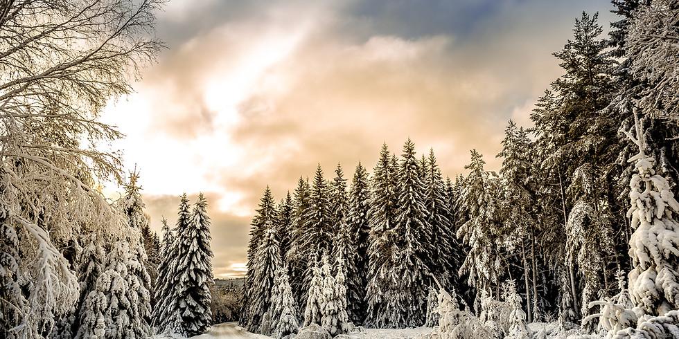 Porcupine Mountain Winter Adventure