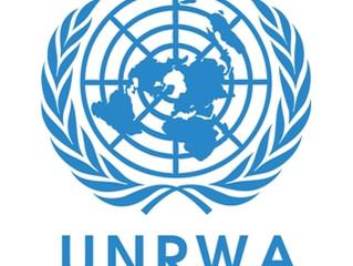 Ein unverantwortlicher Schritt: USA stellen Zahlungen an UNRWA ein