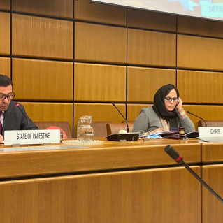 UN Day of Solidarity - Virtuelle Zeremonie der Vereinten Nationen in Wien am 10. Dezember 2020