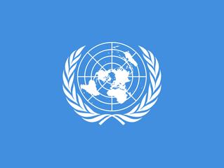 Nach Abstimmung der UNO-Vollversammlung: Palästina führt 2019 Vorsitz der G 77
