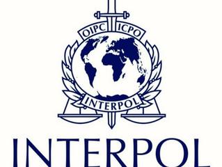 Palästina als Mitgliedsstaat bei Interpol anerkannt