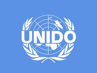 Palästina als Mitgliedsstaat bei UNIDO anerkannt