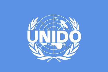 United_Nations_Industrial_Development_Organization.svg_.png
