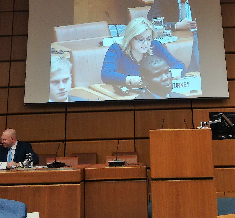 UN-Int. Tag der Solidarität (7)
