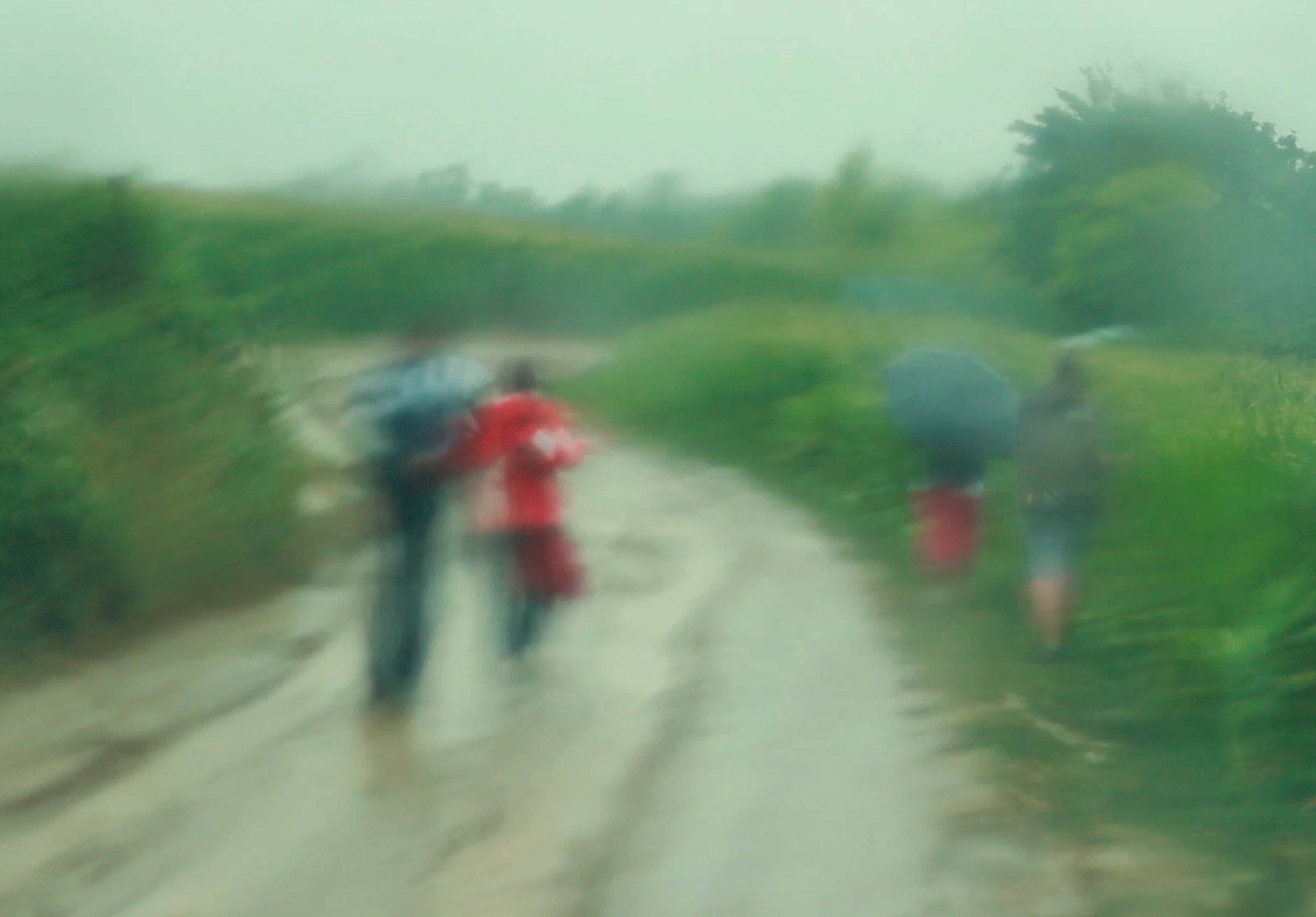 gyumolcsle_csige_eso_rain_land_onfiled