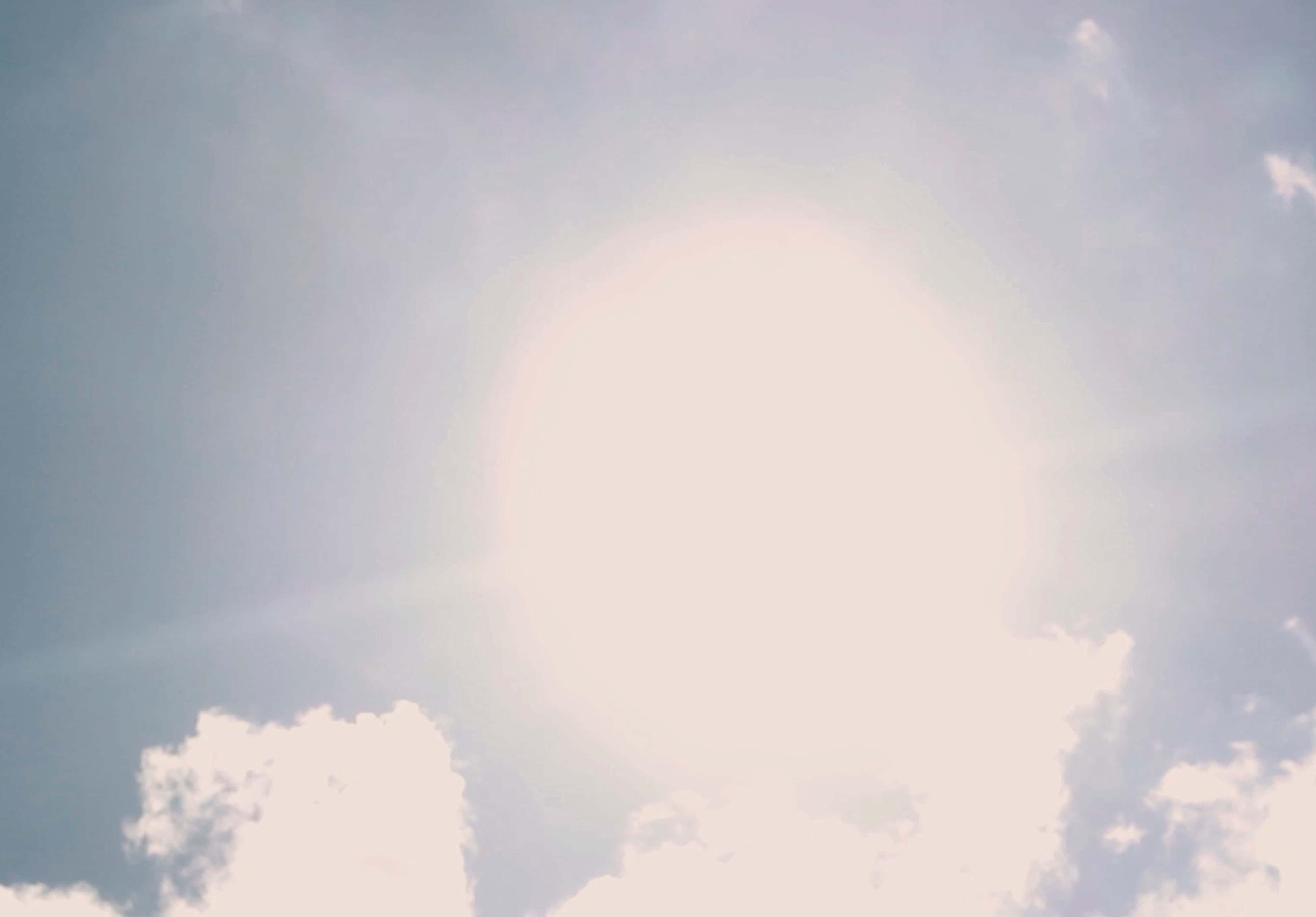 nyar_kajszi_sunshine_csige_tikkaszto_mel