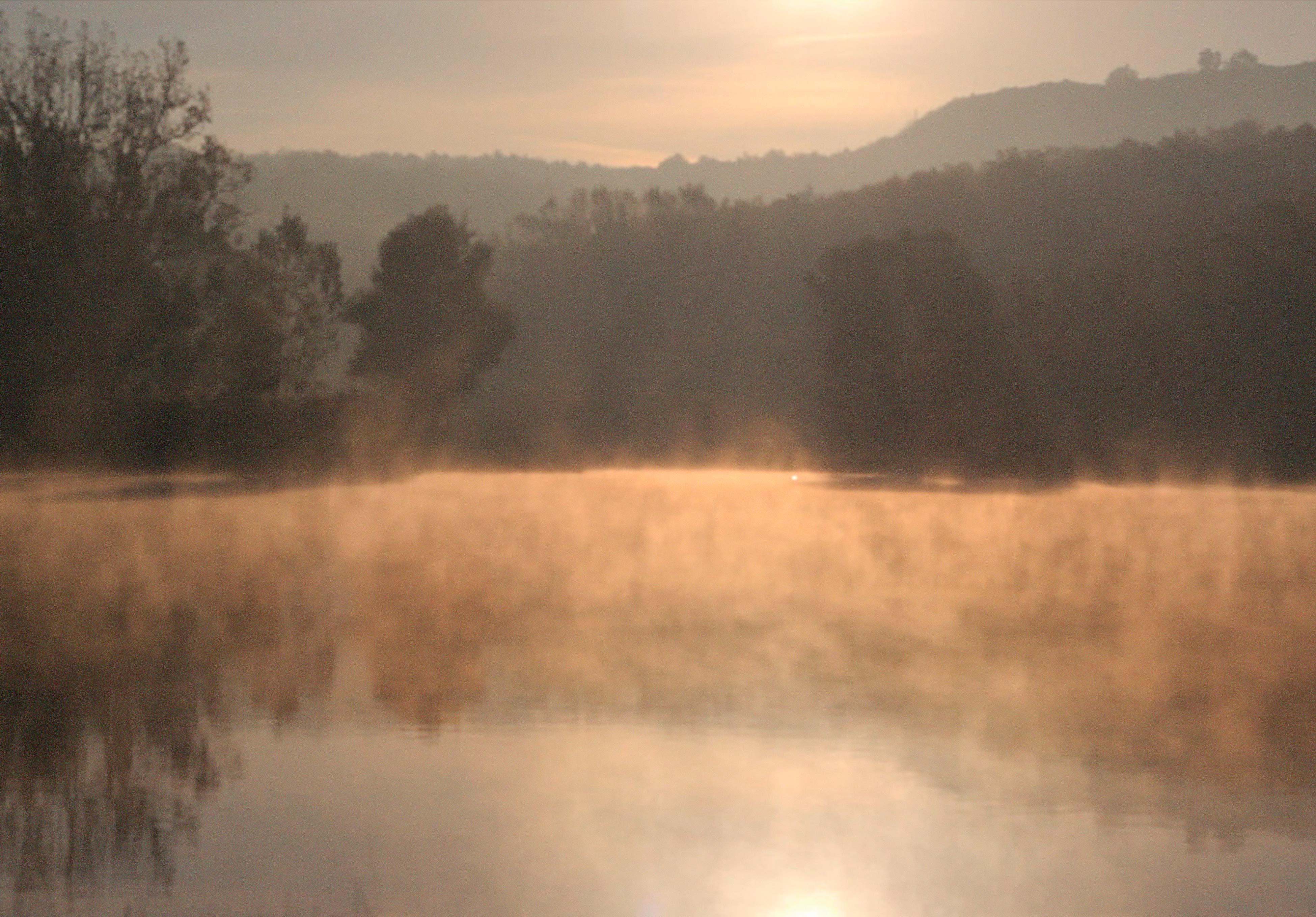 szalkai_to_morning_peace_csige_kert_gard