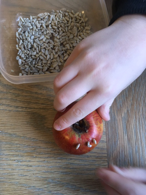 Push sunflower seeds into the apple