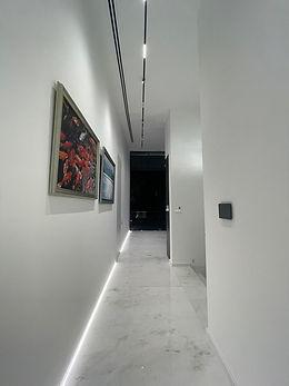 quality LED Strip light Verde Light