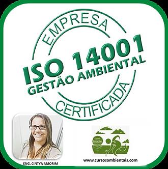 Curso de interpretação da ISO 14001:2015 - (Cod. 029)