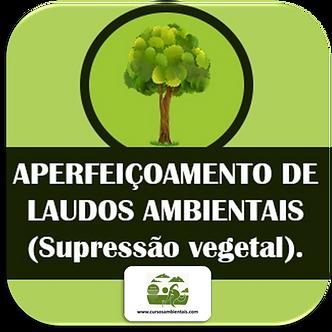 Aperfeiçoamento de laudos ambientais - Supressão vegetal - (Cod. 008)