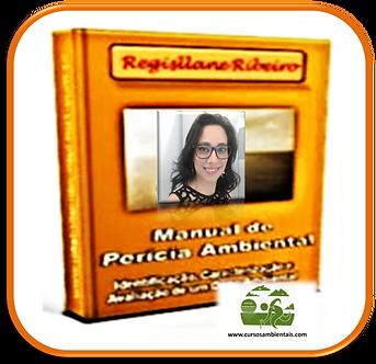 Manual de Perícia Ambiental - (Cod. 036)