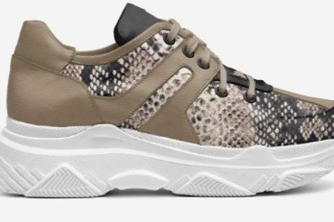 NOMALY Snake Sneakers - Women