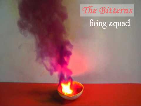THE BITTERNS - FIRING SQUAD (preorder)