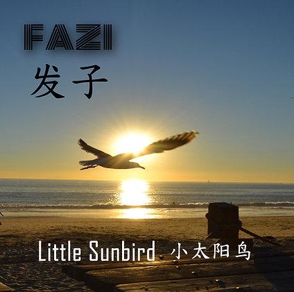 FAZI  Little Sunbird (Mp3 & 24bit) Album Download