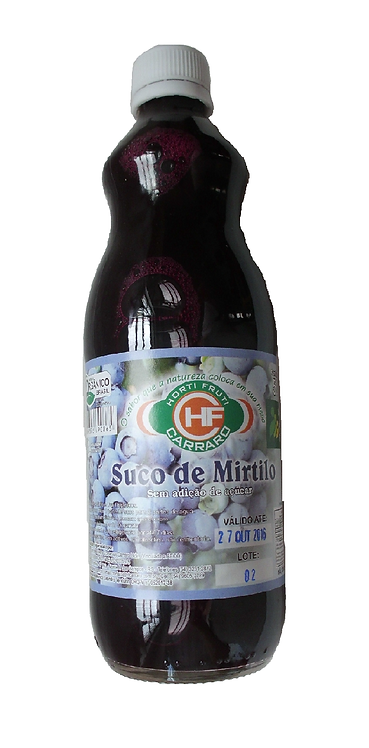 Suco Mirtilo 500ml