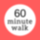 60 minute dog walk Emily Walks Dogs