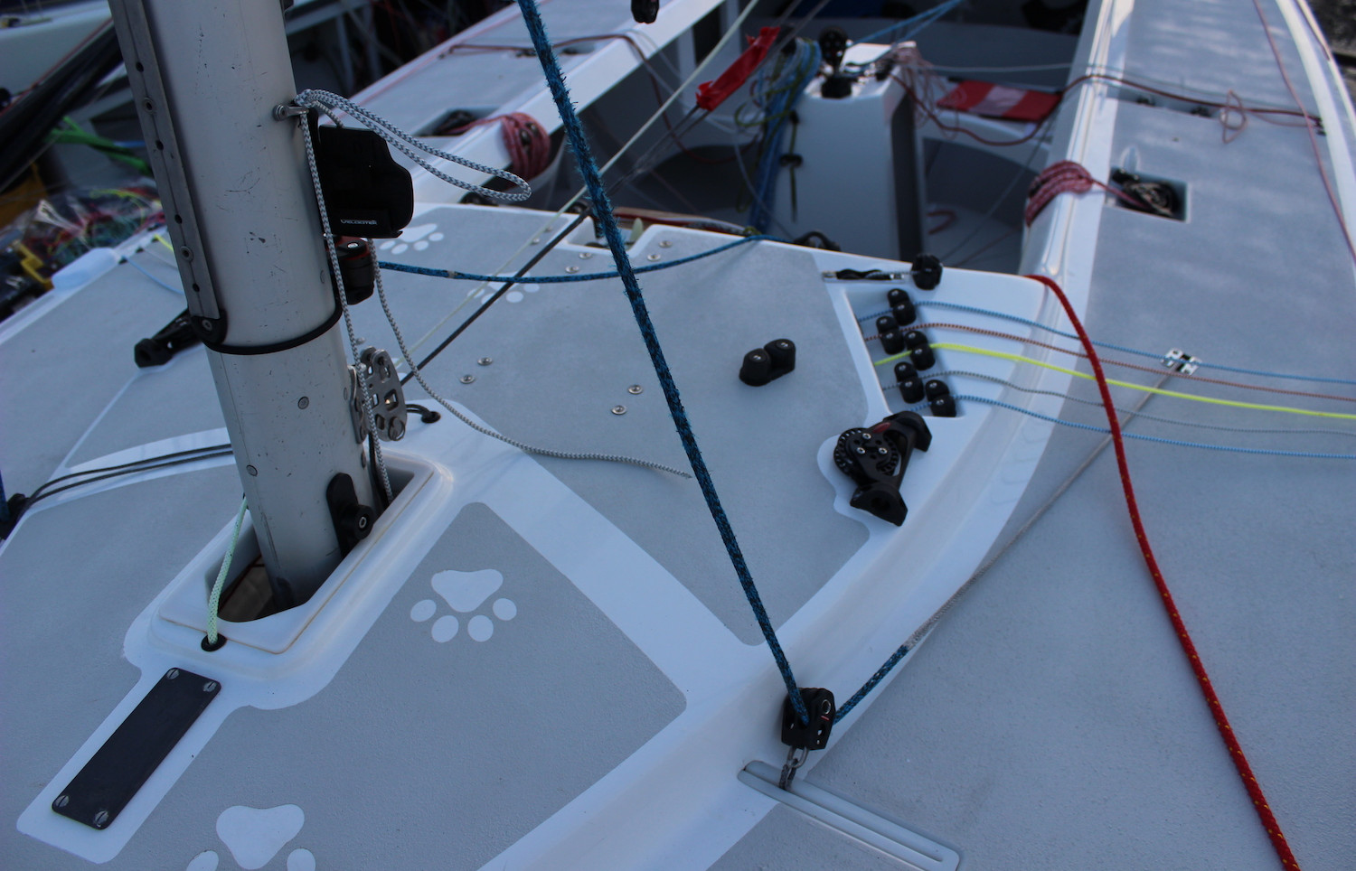 Etchell-race-charter-MBF-from-Andrew-Dog