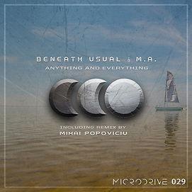 Micro029.jpg