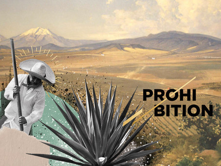 A Sip of History: The Prohibition of Mezcal