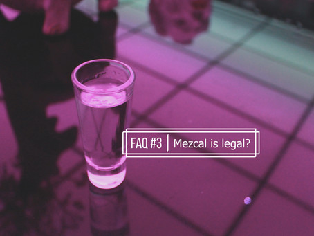 FAQ: Mezcal is legal?