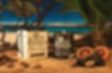 MEDITERRANEAN-FIG-(21)_webiszed_ad.jpg