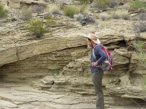 Early-career Geoscientist: Clément Bataille
