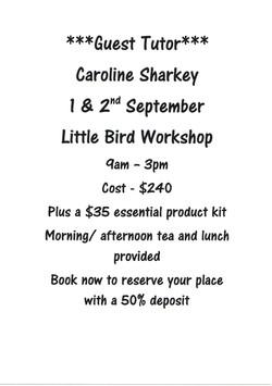 Little Bird workshop