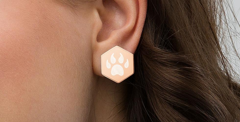 Hexagonal earrings in sterling silver
