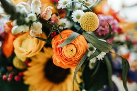 https://www.quinphoto.com/
