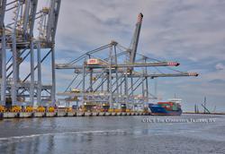 Rotterdam World Gateway (RWG)