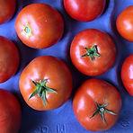 tomatoes_edited.jpg