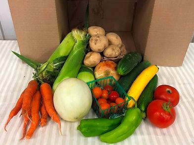 veggiebox4.jpg