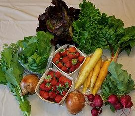 veggiebox3.jpg