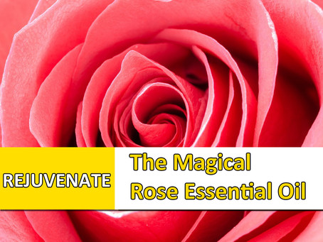 The Magical Rose Essential Oil