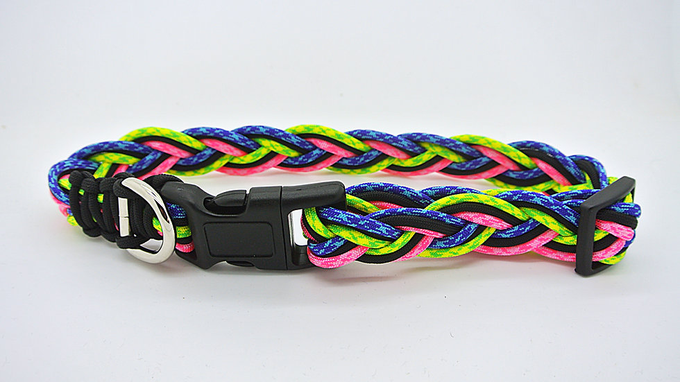 Neon Series Med/Large Adjustable Collar