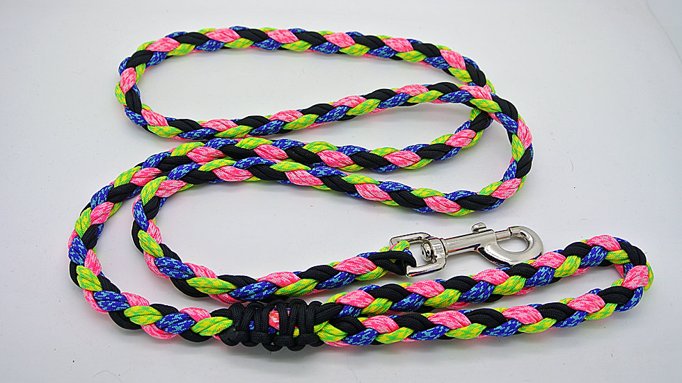 Neon Large Traditional Leashes