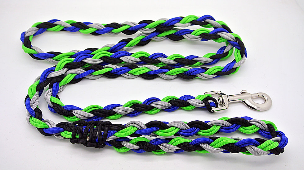 Team Inspired Large Traditional Leashes