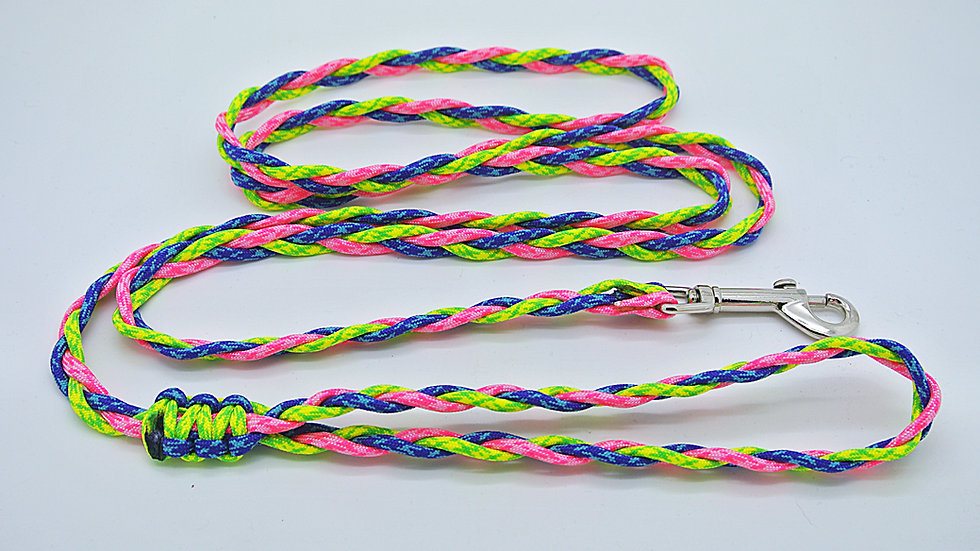 Neon Small Traditional Leashes