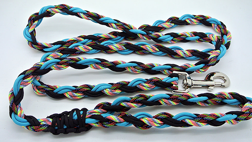 Cosmic Large Traditional Leashes