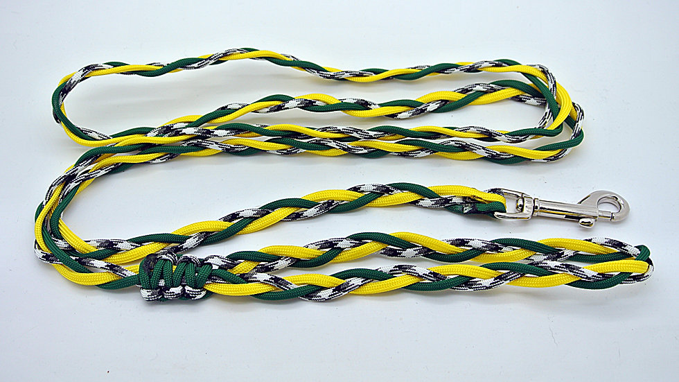 Team Inspired Small Traditional Leashes