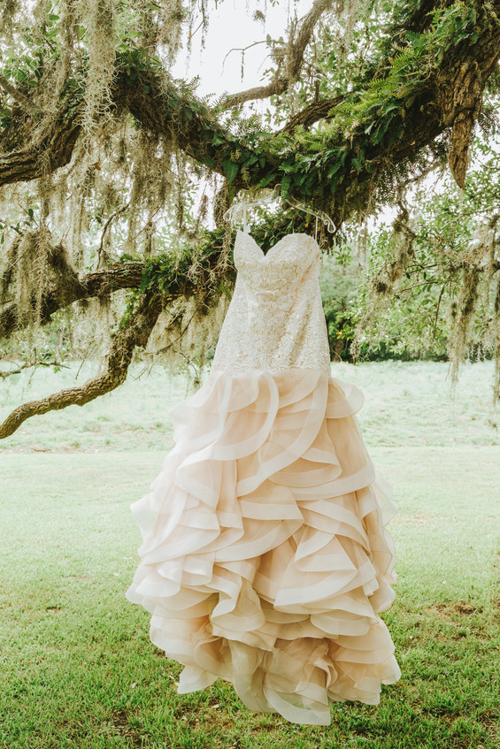 Micheal + Stefani, Live Oak Haven | Wedding