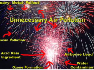 Fireworks – A Cause for Celebration?