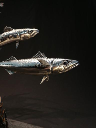 Mackerel pair on bladderwrack