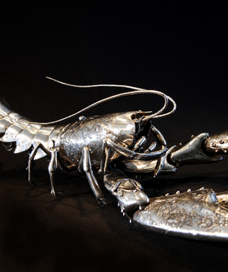 Lobster DSC_0401c.jpg